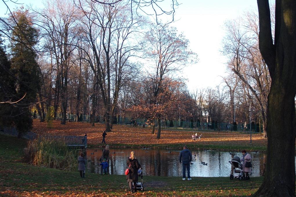 Park - jesień