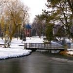Park Staszica, staw