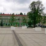Ogród publiczny, pl.Biegańskiego [M.Biś]