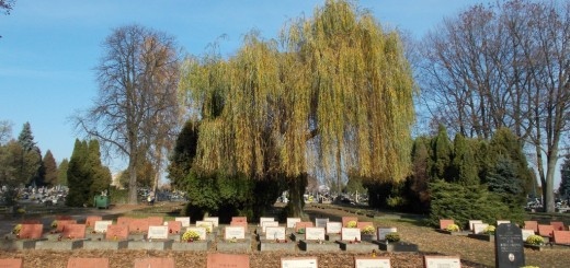 Cmentarz KULE